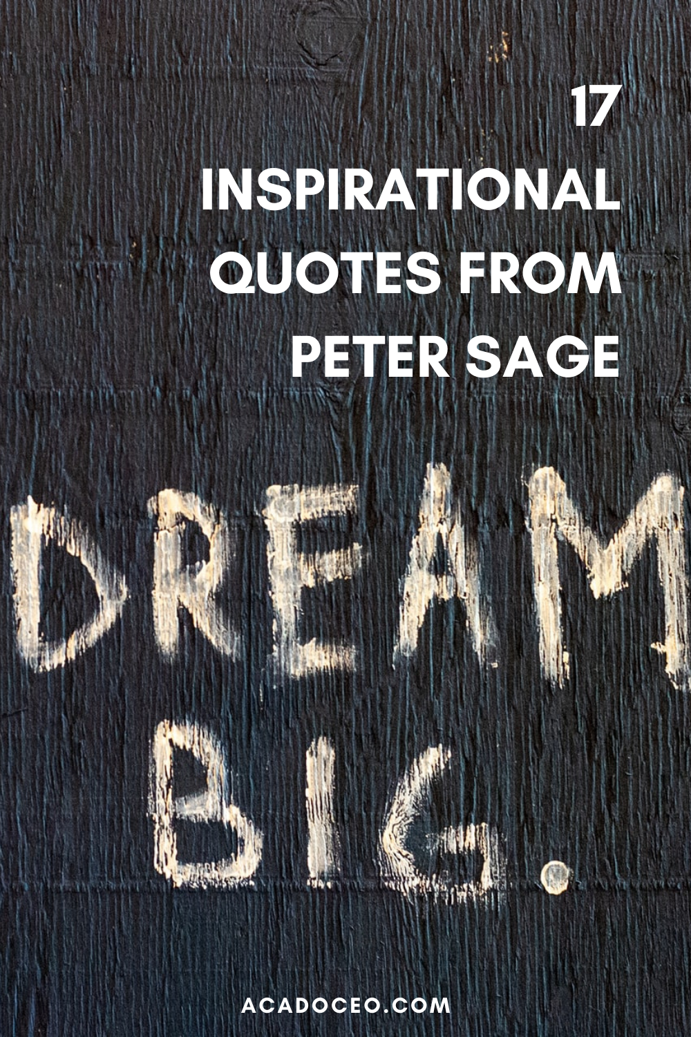 17 INSPIRATIONAL QUOTES FROM PETER SAGE