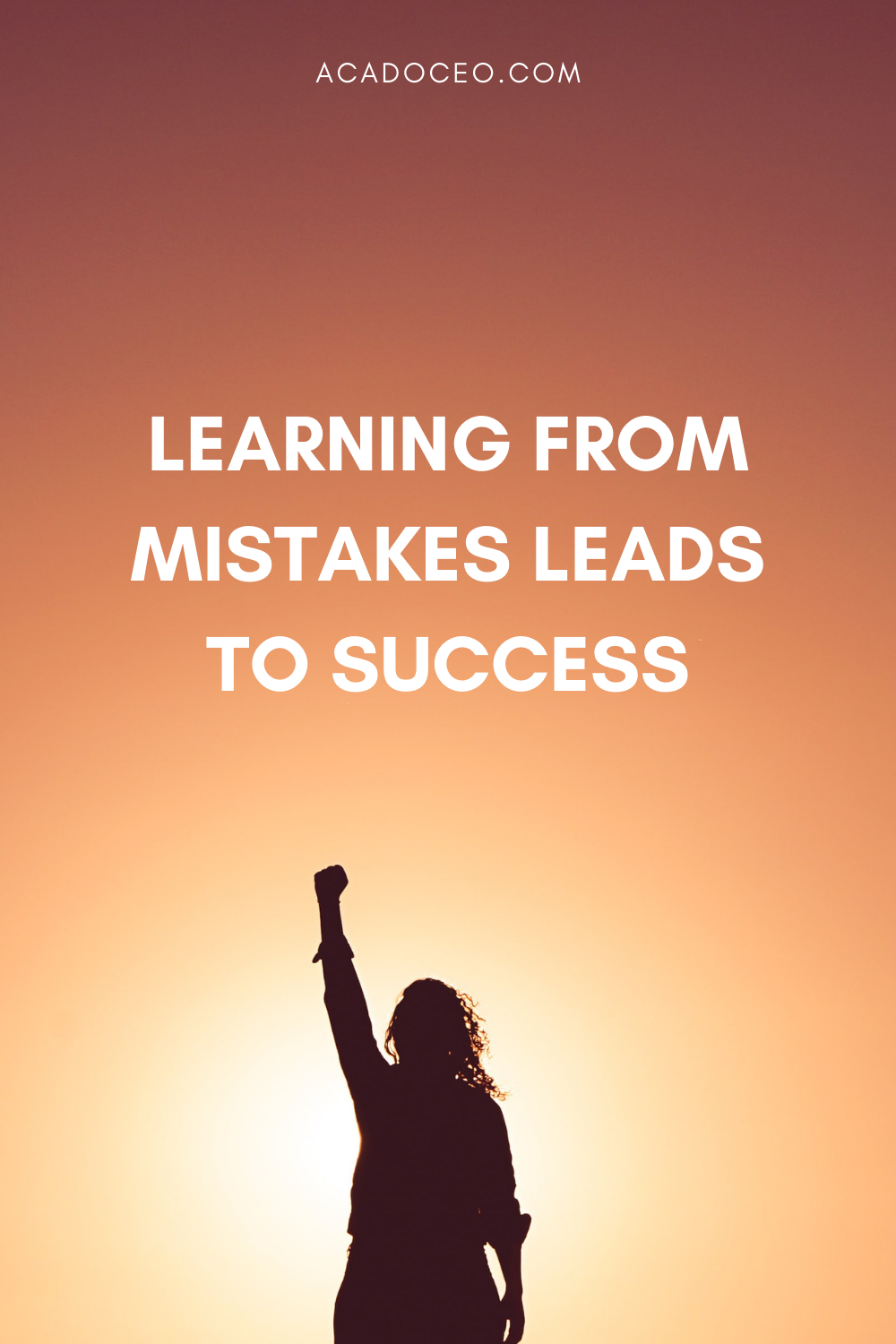 LEARNING FROM MISTAKES LEADS TO SUCCESS