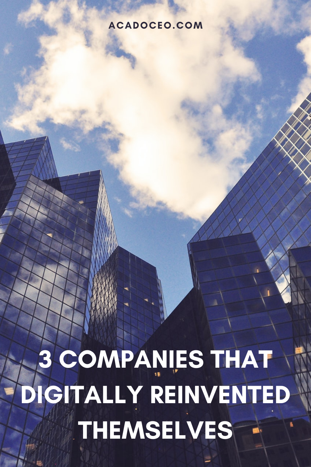 3 COMPANIES THAT DIGITALLY REINVENTED THEMSELVES
